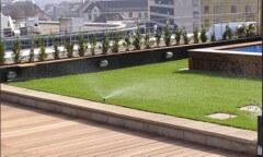 Zöldtető kert a Pro Natura Kerttől